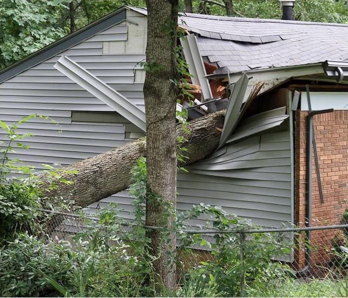 Storm Damage SERVPRO Professionals are the Storm Damage Experts in Spokane & Spokane County
